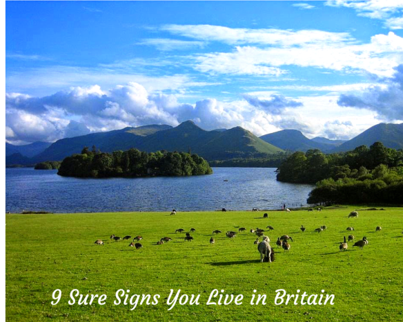 9 Sure Signs You Live in Britain